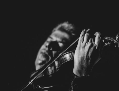Jaroslav Svěcený / koncert